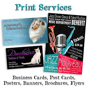 Print design and publishing services. Business card design, post card printing, graphic design, banner design, brochures and flyers.