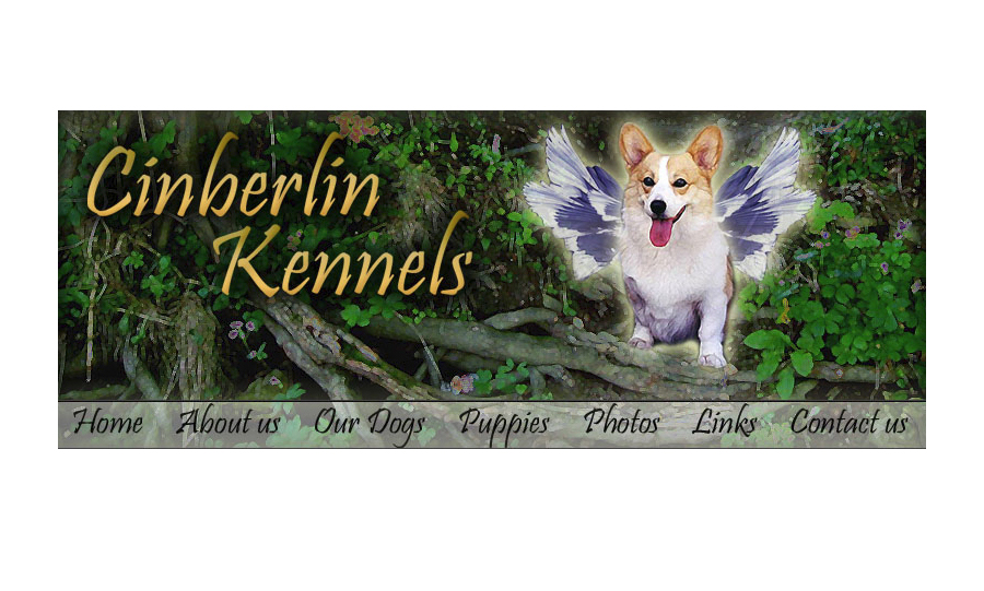 Graphic design work for Corgi website