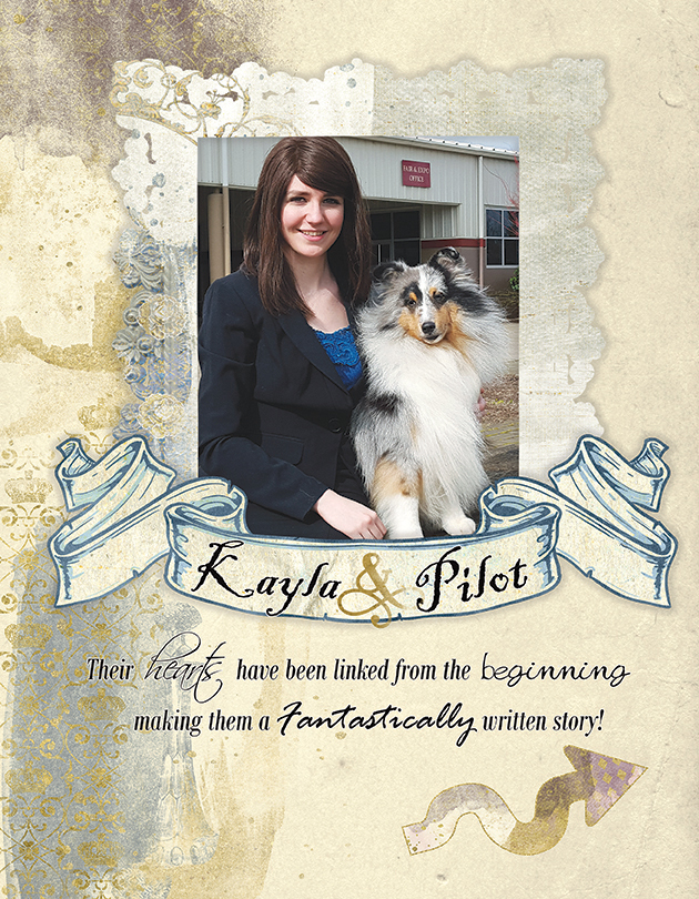 RavenWyn Shelties Advertisement PG1 - Sheltie Magazine