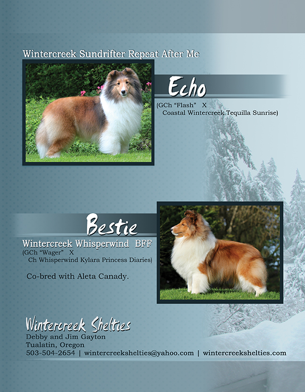 Wintercreek Shelties Advertisement PG2 - Sheltie Magazine